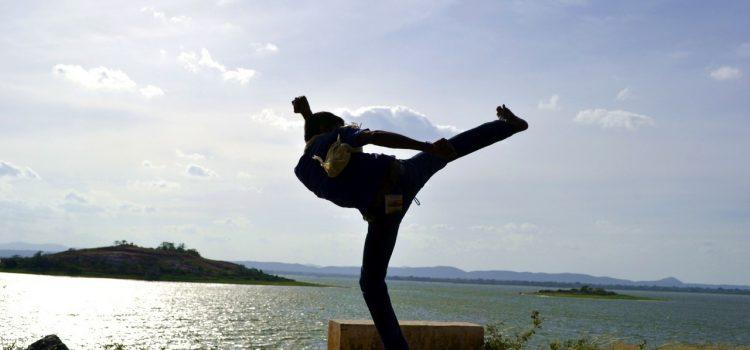 sidekick kickboxen (c)nurzee